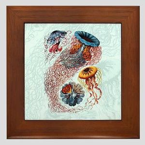 Ernst Haeckel Jellyfish Framed Tile