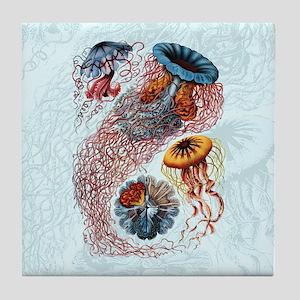 Ernst Haeckel Jellyfish Tile Coaster