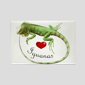 Love Iguanas Rectangle Magnet