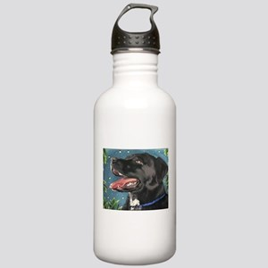 Sassy and the Fireflies Stainless Water Bottle 1.0