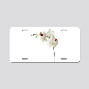 Lady Bug Orchid Aluminum License Plate