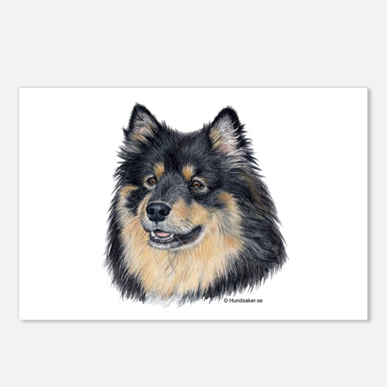 Finnish Lapphund Postcards (Package of 8)