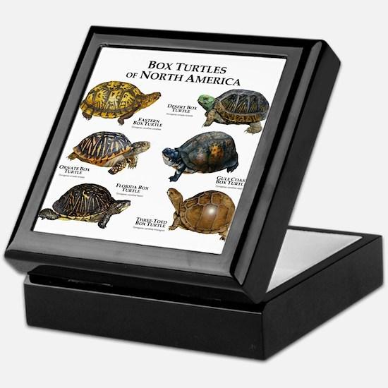 Box Turtles of North America Keepsake Box