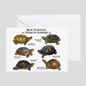 Box Turtles of North America Greeting Card