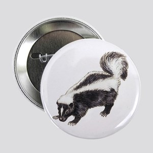 Skunk Pencil Drawings Buttons Cafepress