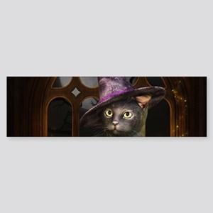 Witch Kitty Cat Bumper Sticker