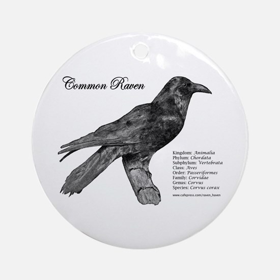 Common Raven - Ornament (Round)