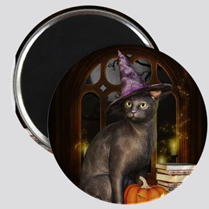 Witch Kitty Cat Magnets