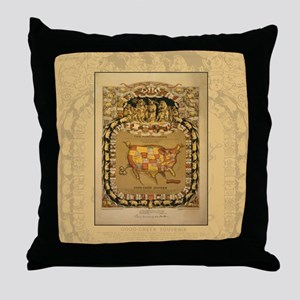 This Porcineograph Throw Pillow