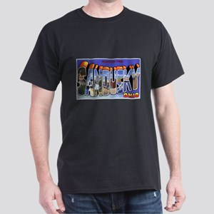 Sandusky Ohio Greetings (Front) Black T-Shirt