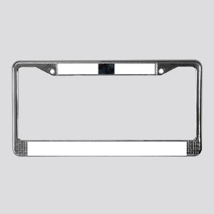 spiders web License Plate Frame