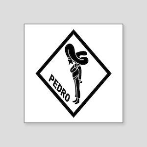 PEDRO Patch (B) Sticker