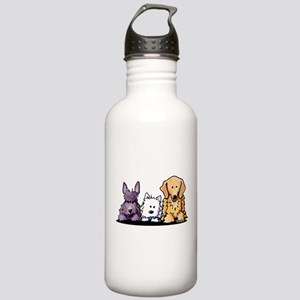 Three Dog Night Stainless Water Bottle 1.0L