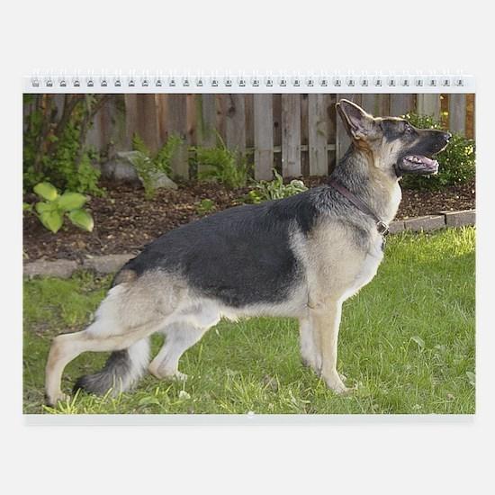 Franimals German Shepherd Wall Calendar
