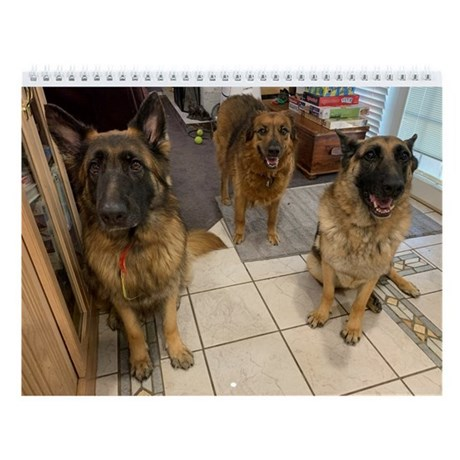 Canine Crew Wall Calendar
