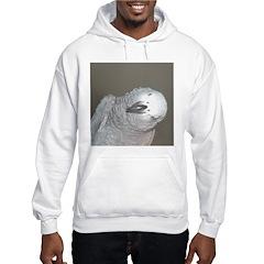 African Grey Dex Hoodie