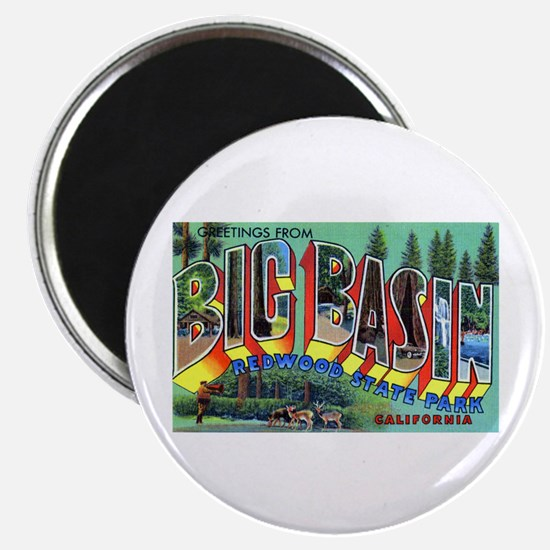 Redwood Big Basin Greetings Magnet