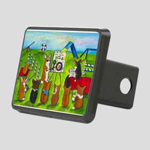 Agility Class Rectangular Hitch Cover
