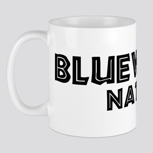 Bluewater Native Mug