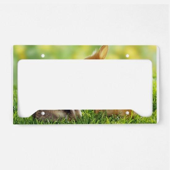 Love Bunnies License Plate Holder