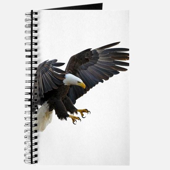 Bald Eagle Flying Journal