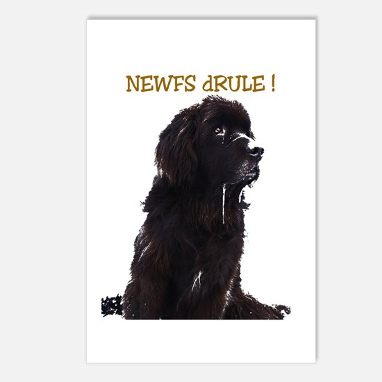 Newfs dRule! Postcards (Package of 8)