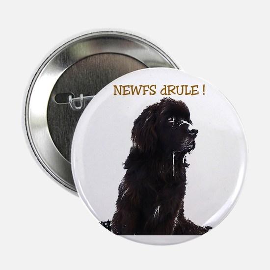 Newfs dRule! Button