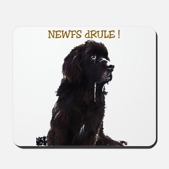 Newfs dRule! Mousepad