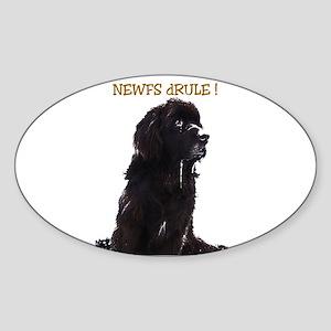 Newfs dRule! Oval Sticker