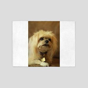 indoor dogs floppy ears Koko blond 5'x7'Area Rug
