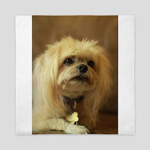 indoor dogs floppy ears Koko blond Lha Queen Duvet