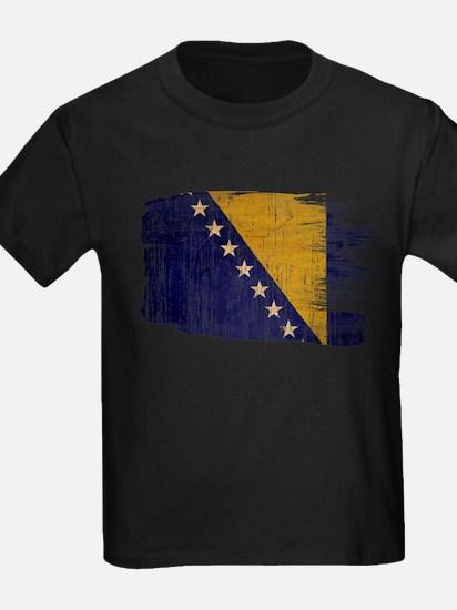 Bosnia and Herzegovina Flag T