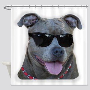 Pitbull in sunglasses Shower Curtain