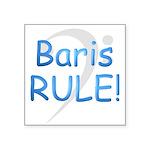 3-baris rule Square Sticker 3