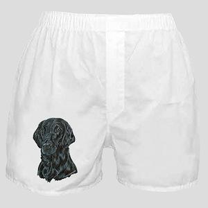 Flat Coated Retriever Boxer Shorts