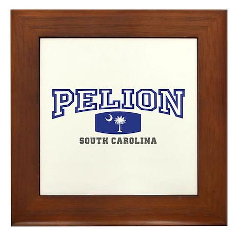 Pelion South Carolina, SC, Palmetto State Flag Fra