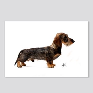 Miniature Wire Haired Dachshund 9Y817D-046 Postcar
