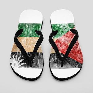 Jordan Flag Flip Flops