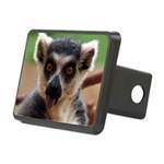 Lemur Rectangular Hitch Cover