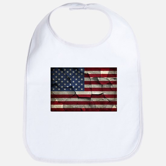 Divided States of America Bib