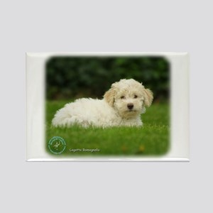 Lagotto Romagnollo 8T19D-24 Rectangle Magnet