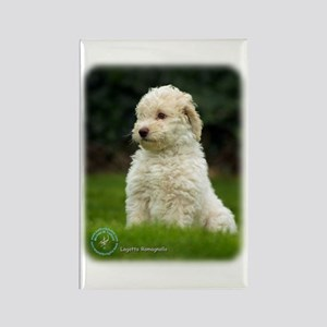Lagotto Romagnollo 8T21D-10 Rectangle Magnet