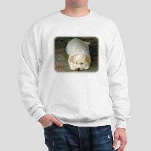 Lagotto Romagnollo 8T22D-12 Sweatshirt