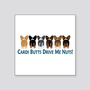 Cardi Butts 10x3 Sticker