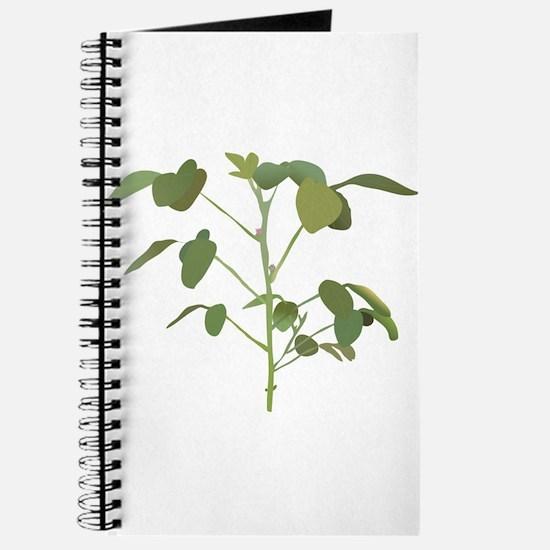 Cute Soybeans Journal