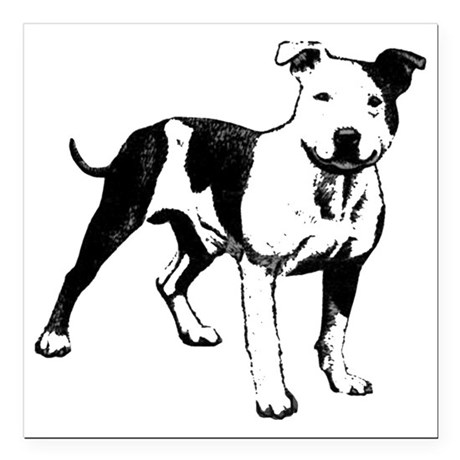 pit bull car magnets cafepress Bully Pit Puppies