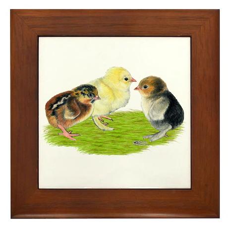 Baby Chicks Trio Framed Tile
