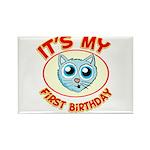 1st Birthday kitty Rectangle Magnet (10 pack)