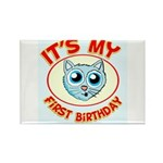 1st Birthday kitty Rectangle Magnet (100 pack)