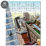 Window Washer's View Puzzle